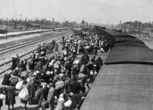 llegada tren