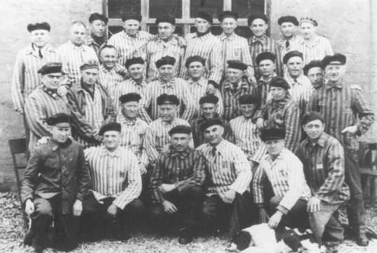 A group of Jehovah's Witnesses in their camp uniforms after liberation.