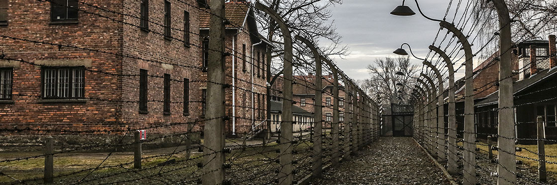 Auschwitz imagen actual
