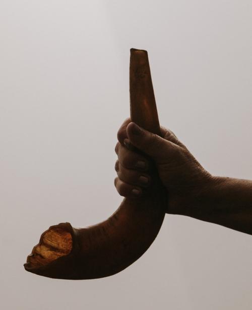 shofar-New-York-auschwitz-exhibition